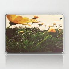 Post-Rain Yellows Laptop & iPad Skin