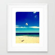 Lonesome Seagul Framed Art Print