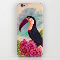 Mr. Toucan iPhone & iPod Skin