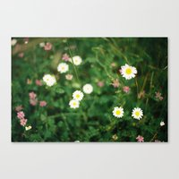 Film Flowers Canvas Print