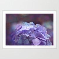 Butterflies Flower Art Print