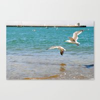 The Swoop Canvas Print