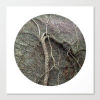 Planetary Bodies - Vines Canvas Print