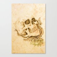 Skull4 Canvas Print