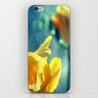 Daylight iPhone & iPod Skin