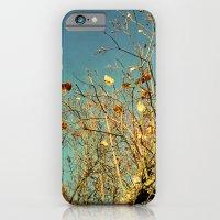 autumn skies iPhone 6 Slim Case