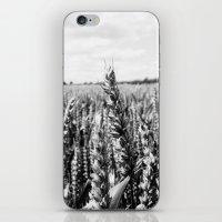 Summer Fields #5 iPhone & iPod Skin