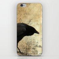Crow Caws iPhone & iPod Skin