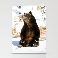 Chillin' Bear Stationery Cards