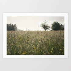paisaje Art Print