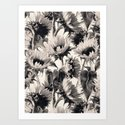 Sunflowers in Soft Sepia Art Print