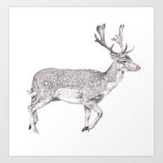 Pencil Drawing - Doe Art Print