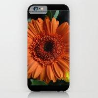 iPhone & iPod Case featuring Orange Flower by Mel (freshfacedandfearless)