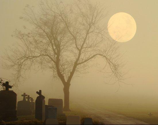Encroaching Fog Canvas Print