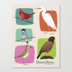 Hawaii Birds Collection Part 1 Canvas Print