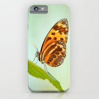 Butterfly Love iPhone 6 Slim Case