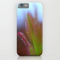 Fairy Like Sundew - JUST… iPhone 6 Slim Case