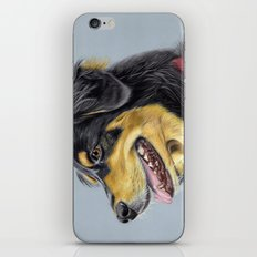 Dog Portrait 1 iPhone & iPod Skin