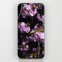 Goodnight Sakura  iPhone & iPod Skin