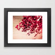 Fall Leaves Framed Art Print