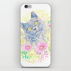 Dreamy Chartreux Cat iPhone & iPod Skin