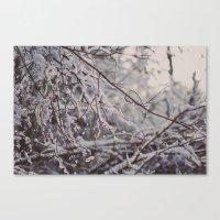 winter snow Canvas Print