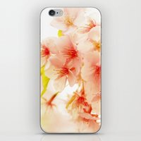 BLOSSOM OF PINK iPhone & iPod Skin
