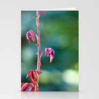 Baby Rose Leaves Stationery Cards