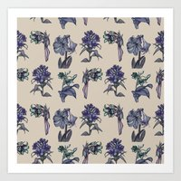 Botanical Florals   Vintage Blueberry Art Print
