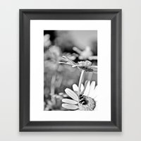 The Flower And The Bug Framed Art Print
