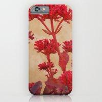 Rustic Flowers iPhone 6 Slim Case