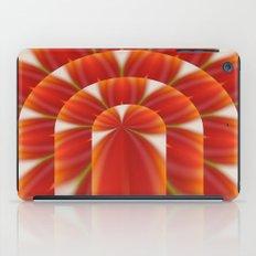 Door to the inner iPad Case