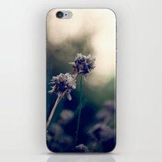 Inside the Shadow iPhone & iPod Skin