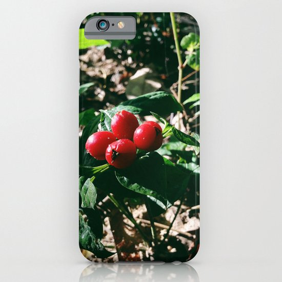 Spider Fruit iPhone & iPod Case