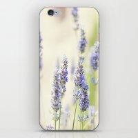 Lavanda. iPhone & iPod Skin