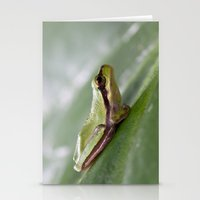Mediterranean Tree Frog 1095 Stationery Cards