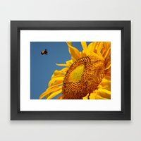 Mr. Yellow Britches Framed Art Print