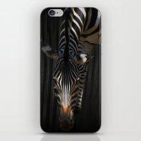 Stripes on Stripes iPhone & iPod Skin