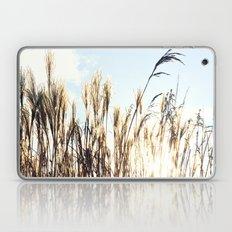sun setting on reeds Laptop & iPad Skin