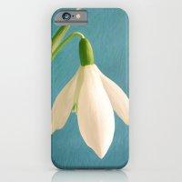 Single Snowdrop iPhone 6 Slim Case