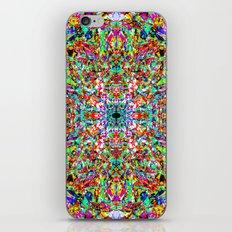 0079 iPhone & iPod Skin