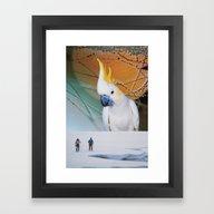 Framed Art Print featuring Cockatoo by John Turck