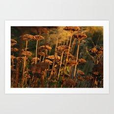 Autumn Tint of Gold Art Print