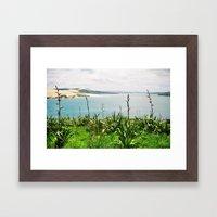 Opononi Framed Art Print