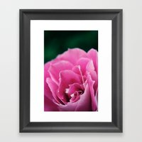 Flower In Bloom Framed Art Print
