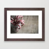 Rustic Candy Canes - Chr… Framed Art Print