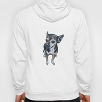 Artie the Chihuahua Hoody