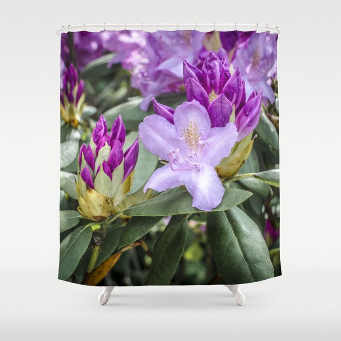 purple flowers shower curtain by mikemartelli society6