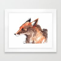 Angry Fox Framed Art Print