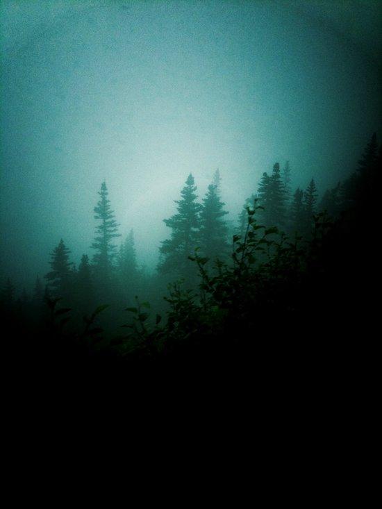 Dark as Night Canvas Print